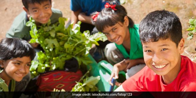 POSHAN Maah 2021: 'Establish Nutrition Gardens To Fight Malnutrition,' Union Minister Smriti Irani Urges Districts