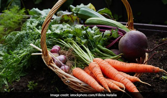 Diversity in Diets for better Nutrition: A Policy Perspective